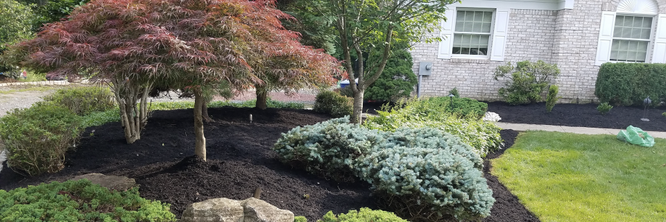 We provide landscaping services since 2005